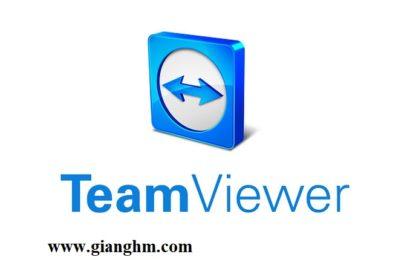 TeamViewer v13.0.6447 Enterprise/Premium bản quyền mới nhất 2018